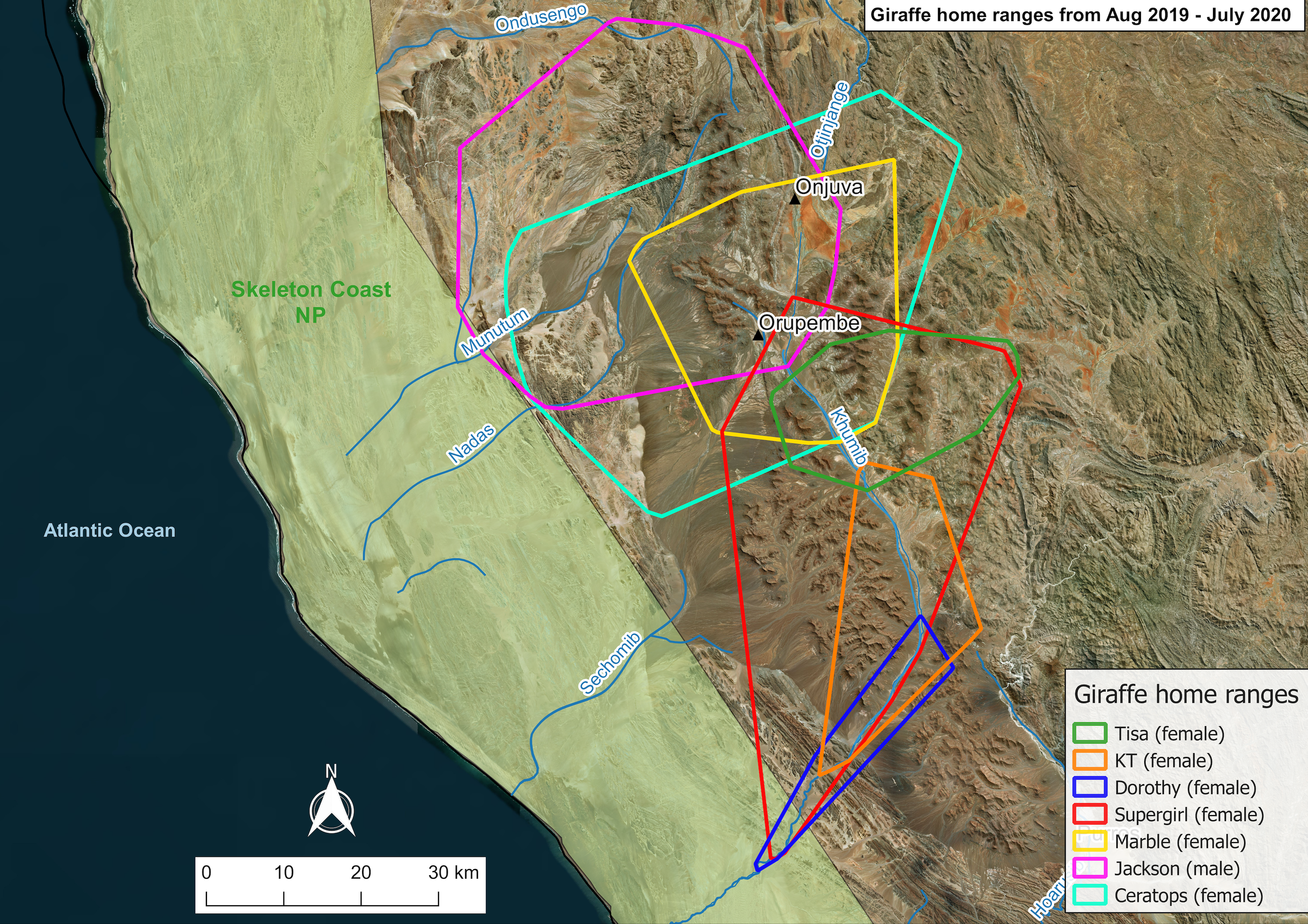 A map showing the home ranges of six female and one male giraffe in the study area.