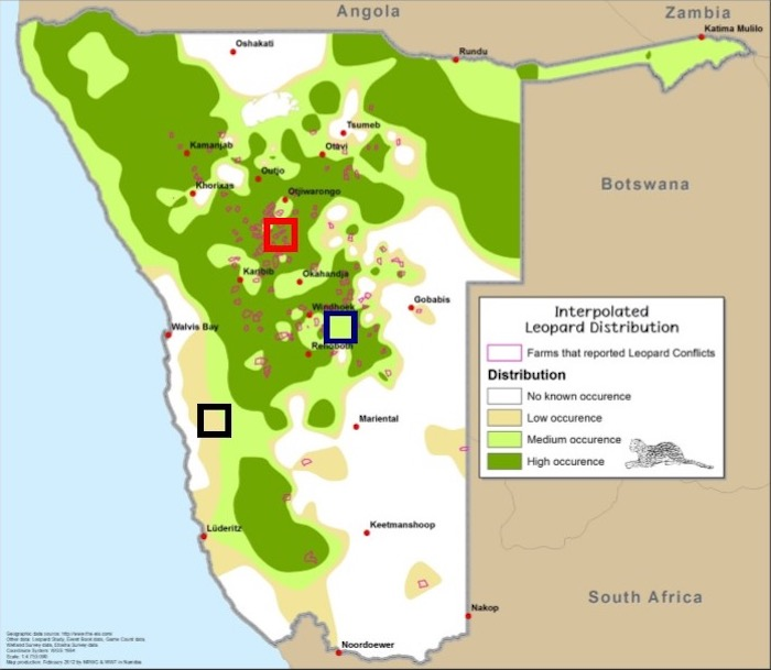A map showing how leopards appeared to be distributed in the 2011 study.