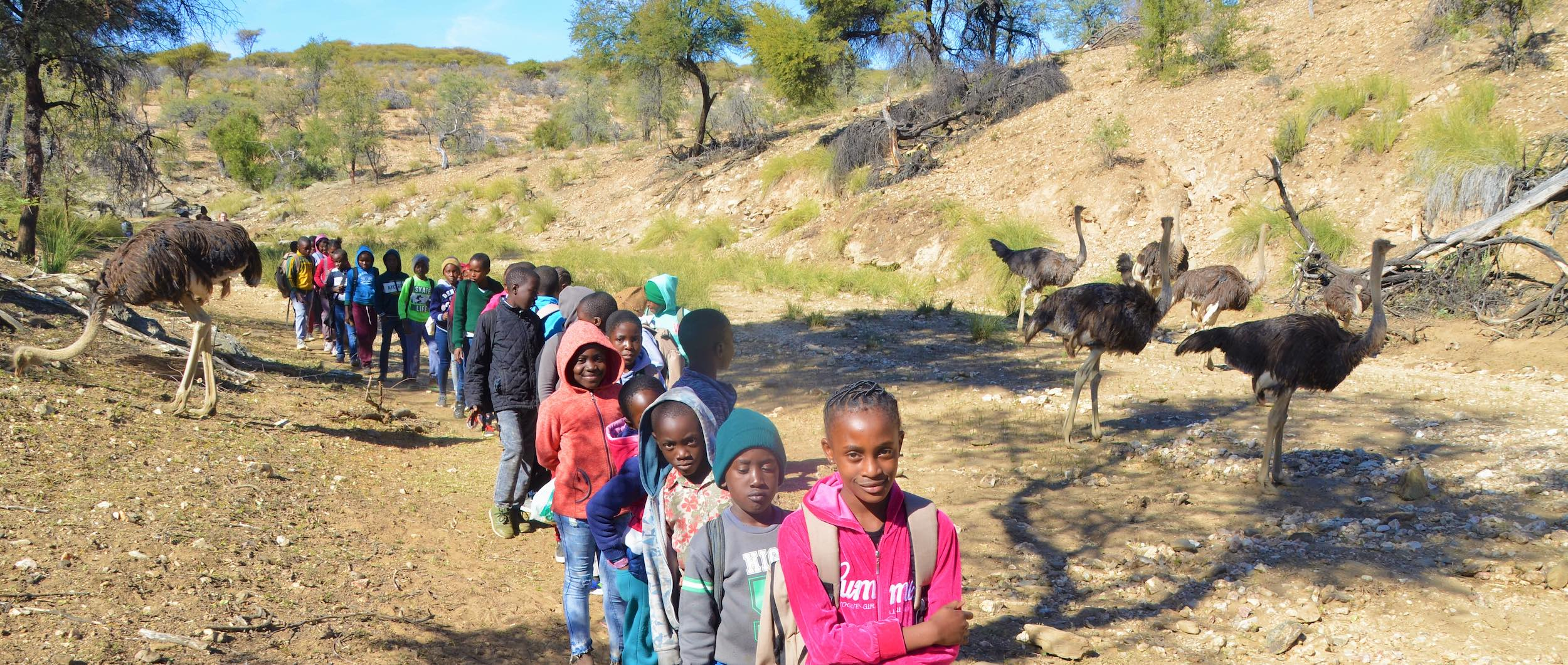 A line of children on a KEEP excusrsion encounter several giraffe in a dry riverbed.