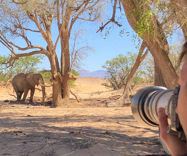 A tourist points the lens of a large camera towards a nearby elephant