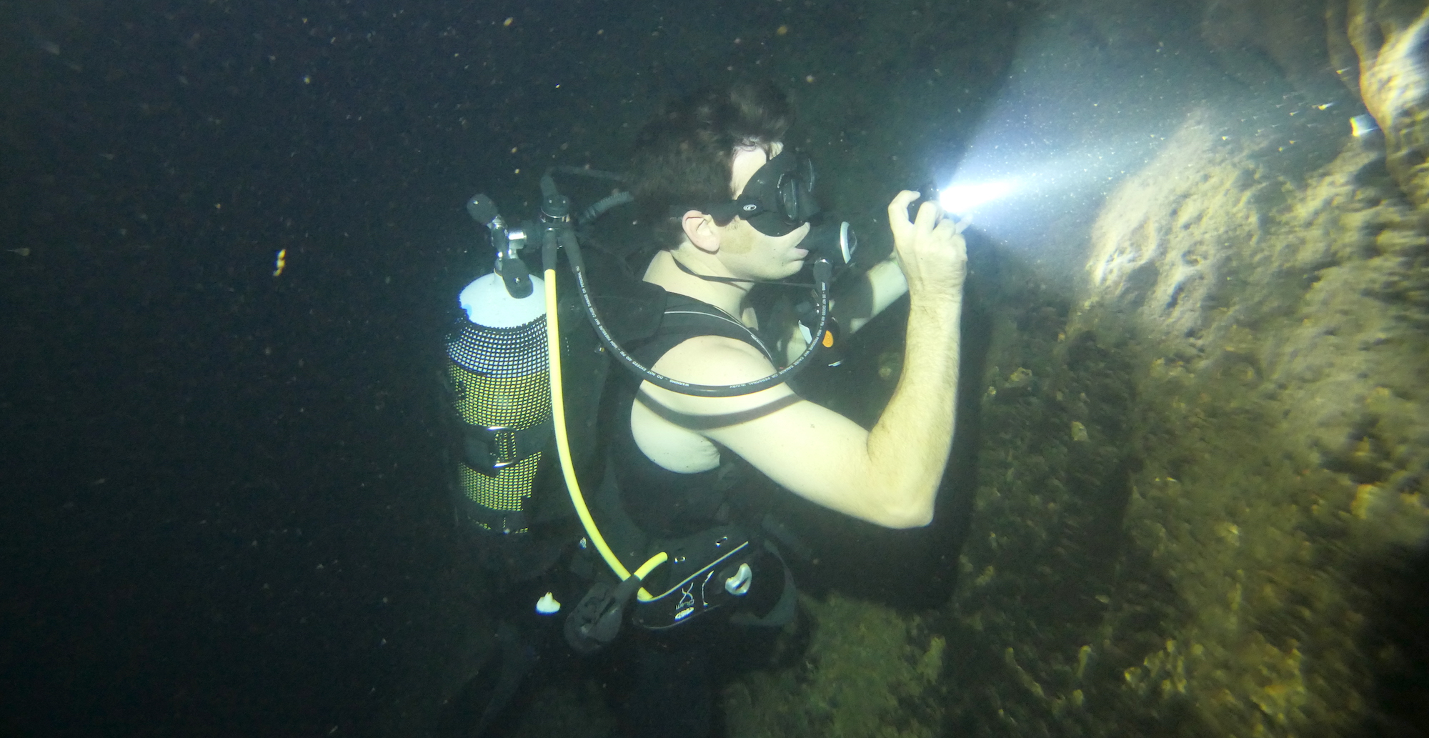 A research diver counts cave catfish