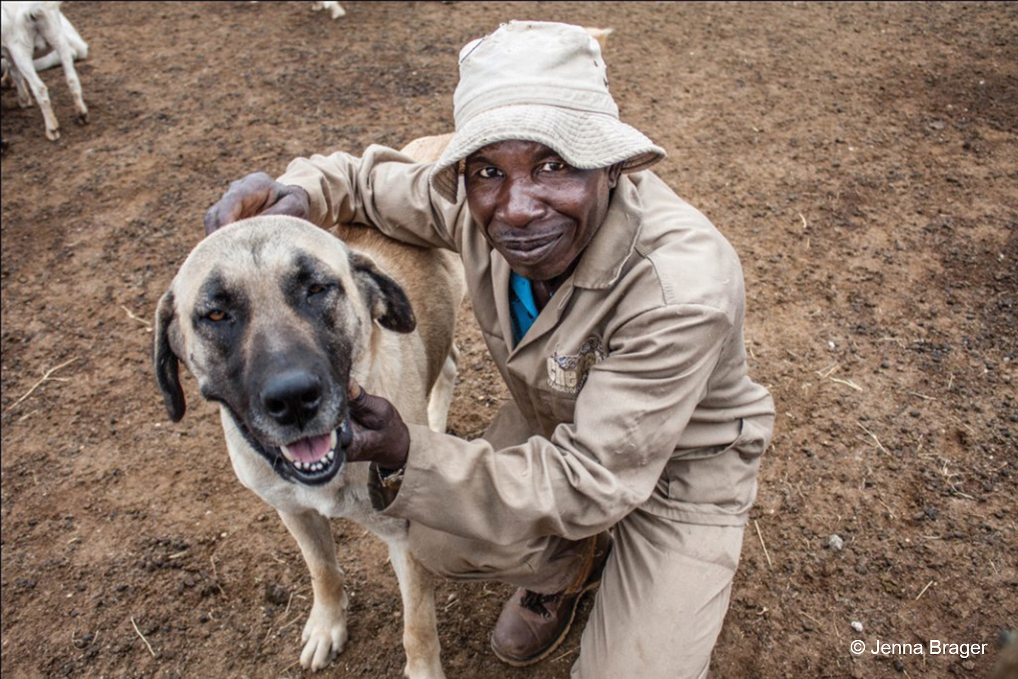 Armas the herder smiles while hugging a guarding dog